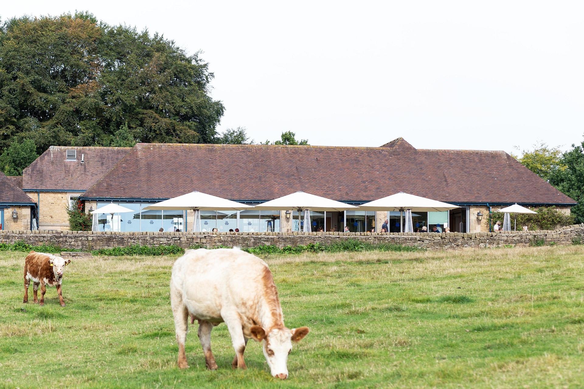 peak architects chatsworth farm shop co low